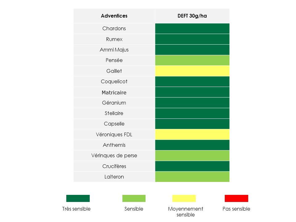 Graphe_Deft_Site internet