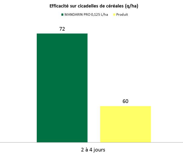 Graphe_Mandarin Pro_Cicadelles