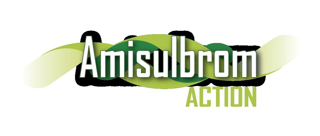 LOGO AMISULBROM-01